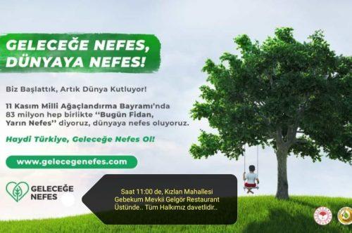Ağaçlandırma Kampanyası